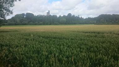 Castle Hornby