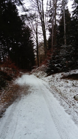 Unterwegs am Ulrichsberg