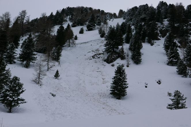 Schneebrett Turracherhöhe