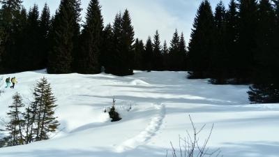 traumhafter Schnee