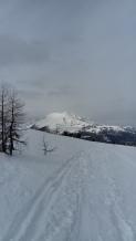Wintertaler Nock