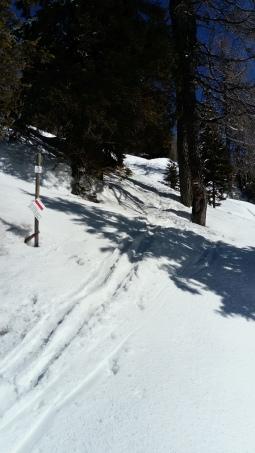 Am Alpe Adria Trail