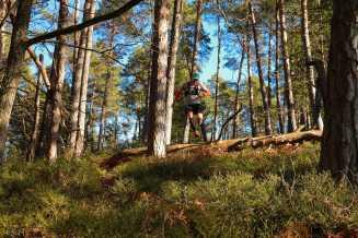 Streckenchef Bernhard Buxbaumer untwerwegs am Trail